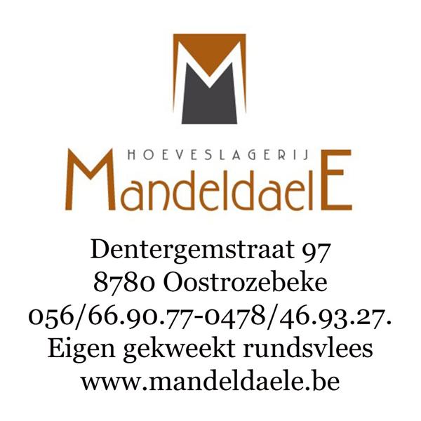 HOOFDSPONSOR VC COSMOS - Mandeldaele